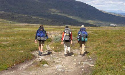 Fråga till vandringsguiden!