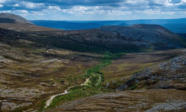 Gästbloggare: Sonfjällets Nationalpark – Dagsturer