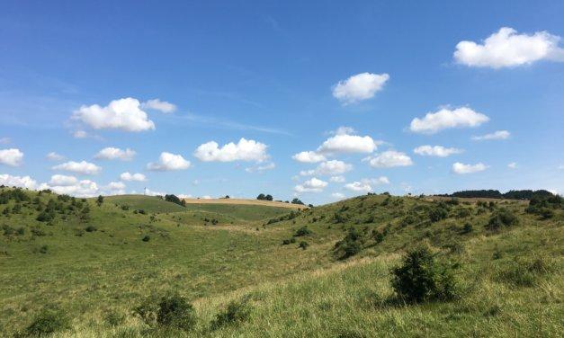 4 smultronställen för vandring i Skåne